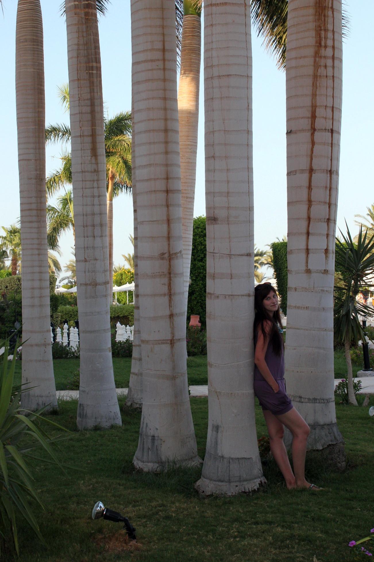Отзыв Марины об отдыхе в Отеле Club Azur Resort 4* в Хургаде.