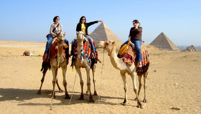 Девушки на верблюдах