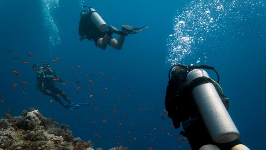 Экскурсия под водой.
