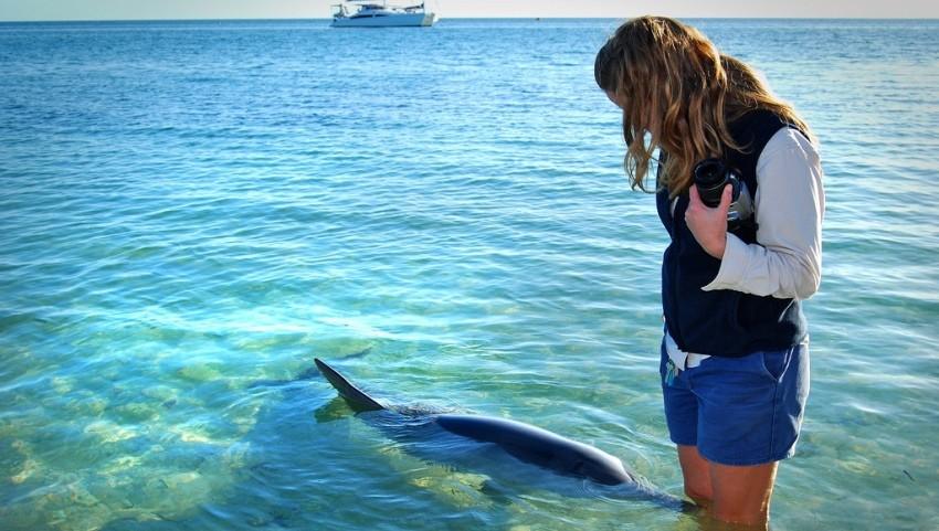 Девушка с дельфином.