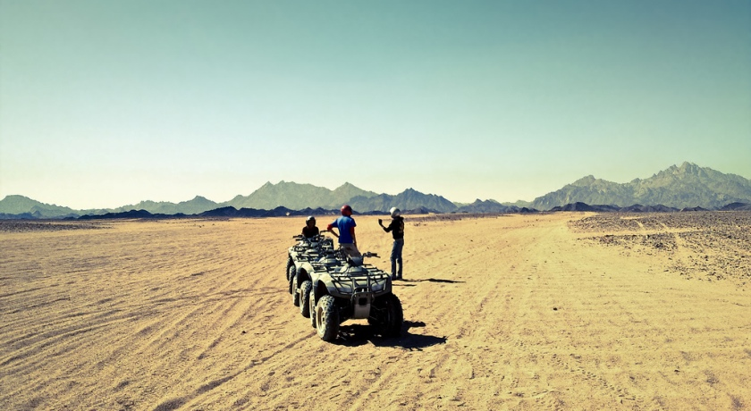 Сафари в пустыне.