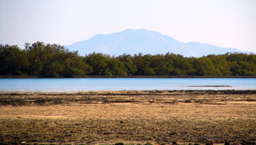 Национальный парк Набк.